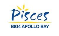 picies_logo_comp